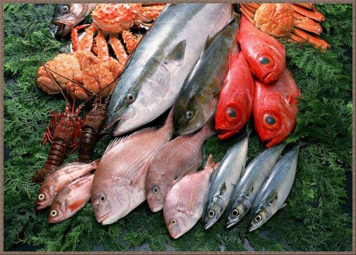 1273156665_1256794661_fish-17 (700x501, 124Kb)
