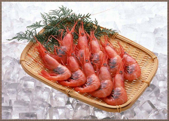 1273156689_1256794743_fish-21 (700x500, 100Kb)