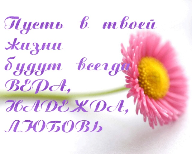 91282408_0_748f5_e17b9f0c_XL.jpg