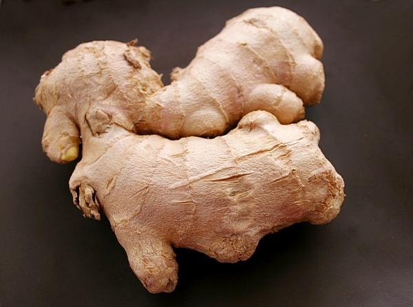 ginger-01 (600x446, 98Kb)
