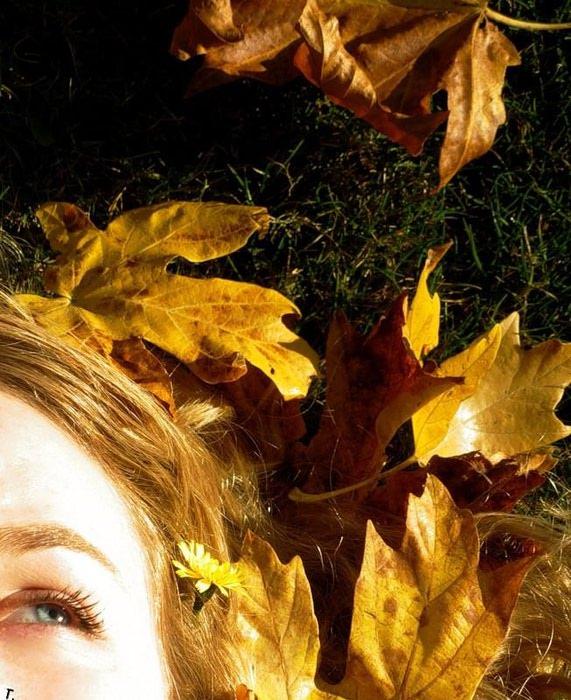 fall_27 (571x700, 114Kb)