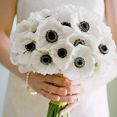 flowers-anemone (400x400, 35Kb)