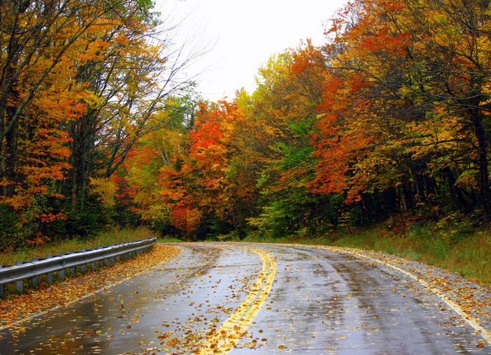4741324_79510725_All_sizes__Autumn_in_Maine__Flickr__Photo_Sharing (700x507, 929Kb)