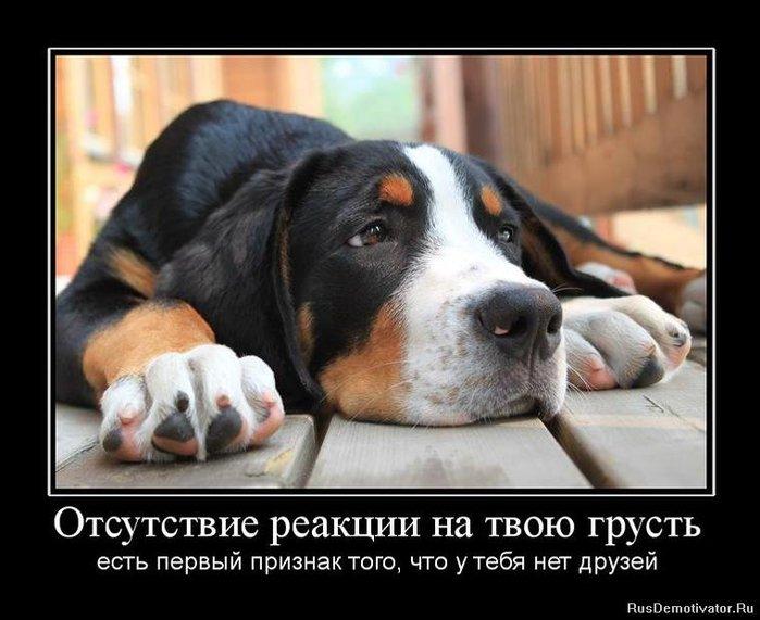 1282146085_132400_otsutstvie-reaktsii-na-tvoyu-grust (700x571, 67Kb)