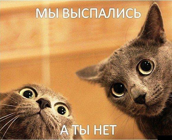 79401743085023_1343694031_bugagashenka-20 (584x475, 69Kb)