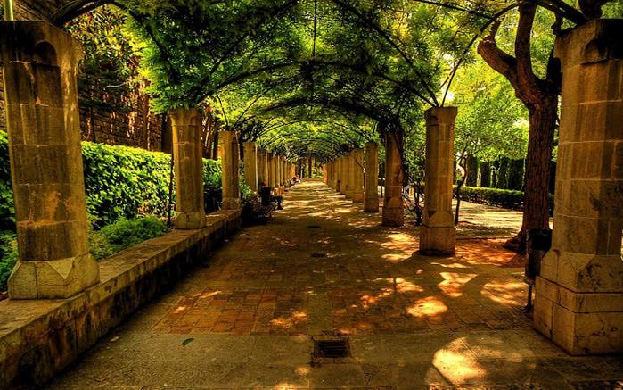 Красивая старинная аллея - рай для тех, кто хочет спастись от палящего испанского солнца... (700x437, 200Kb)