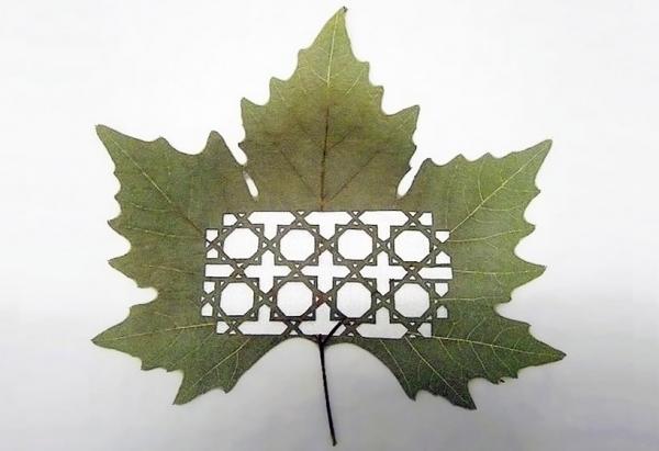 резьба на листьях17 (600x411, 136Kb)