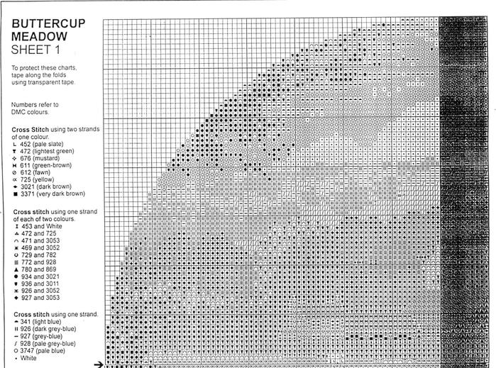 JCBM273_Buttercup_Meadow1-2 (700x519, 298Kb)