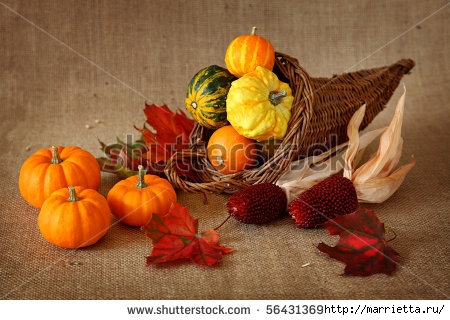 stock-photo-cornucopia-with-pumpkins-on-brown-background-56431369 (450x320, 118Kb)