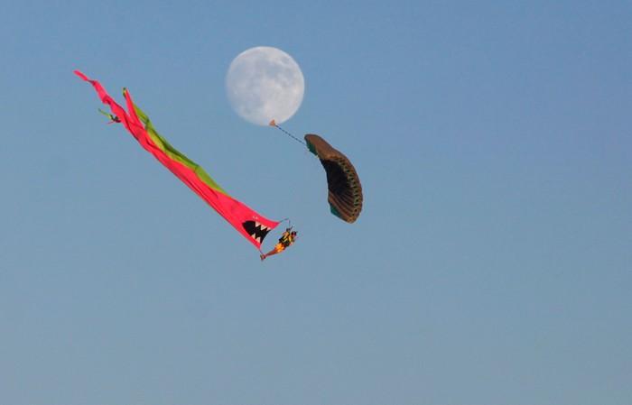 Лучшие фото фестиваля Burning Man 2012 28 (700x449, 26Kb)