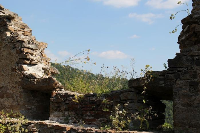 Развалины замка Аггштайн у вод Дуная 98742
