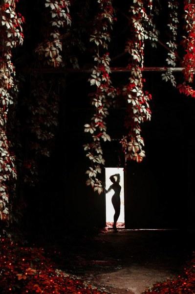 работы фотографа Анны Шакиной10 (399x600, 57Kb)