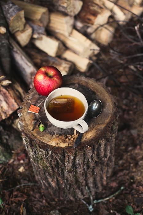 завтрак на природе,чай,природа,утро (466x700, 187Kb)
