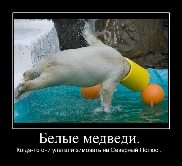 1249287478_hiop.ru_demotivator-210 (640x584, 70Kb)