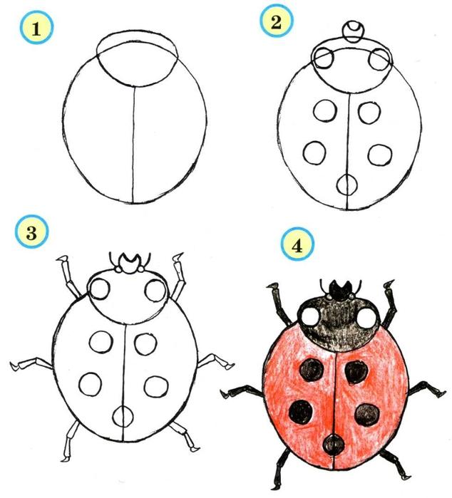 насекомые (2) (634x700, 148Kb)