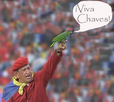 Viva Chaves01 (400x359, 25Kb)