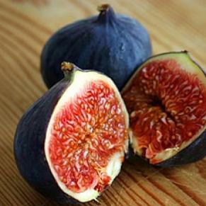 figs1 (291x291, 17Kb)