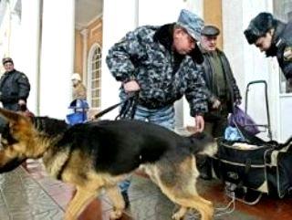Собака-пенсионер вернулась в метро (320x241, 19Kb)