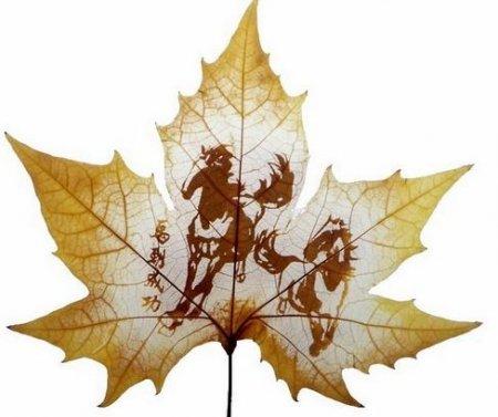1267534639_leaf-carving5 (450x377, 30Kb)