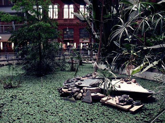 botanic (6) (560x419, 89Kb)