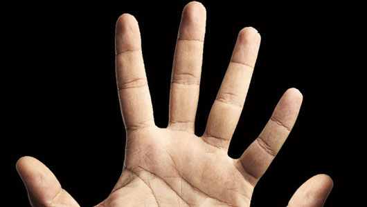 humans_5_fingers_1 (530x300, 20Kb)