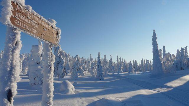 Finland28 (640x361, 35Kb)