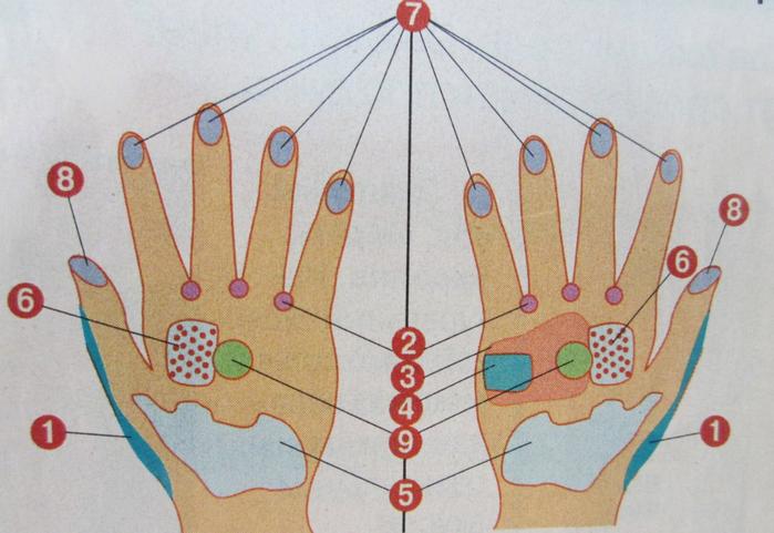 Рука (700x481, 376Kb)