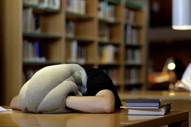 Ostrich Pillow4 (640x427, 30Kb)