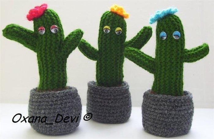 kaktusyi (700x455, 58Kb)