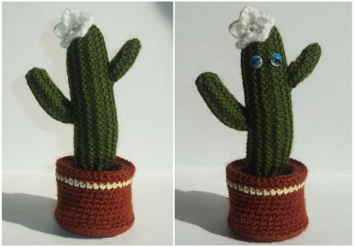 kaktus-500x350 (500x350, 115Kb)