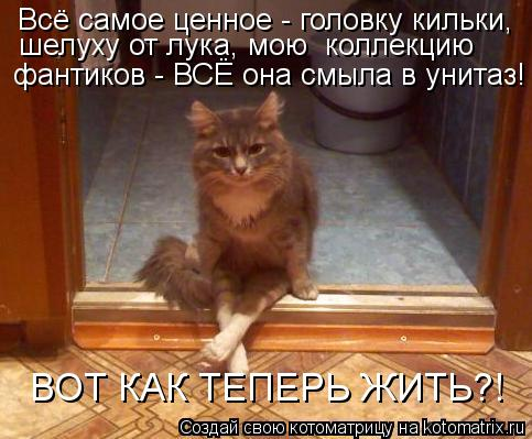 kotomatritsa_Ax (483x399, 42Kb)
