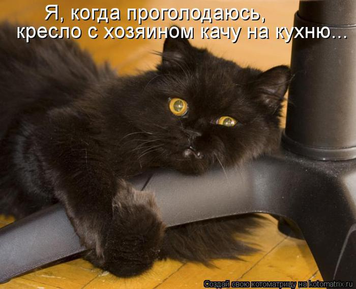 kotomatritsa_P6 (700x568, 54Kb)