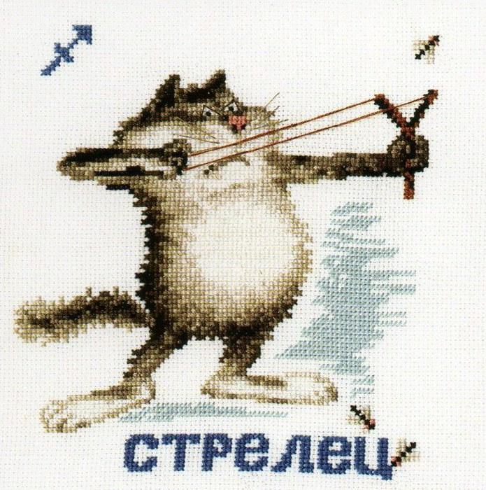 Кот стрелец.