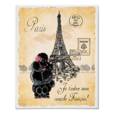 black_poodle_eiffel_tower_paris_art_print_poster-rb2d6707d682a43029f6d4a5bd4901392_ix6_400 (400x400, 37Kb)