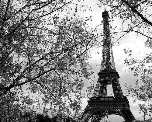 black-eiffel-tower-paris-vintage-Favim.com-422793 (500x401, 104Kb)
