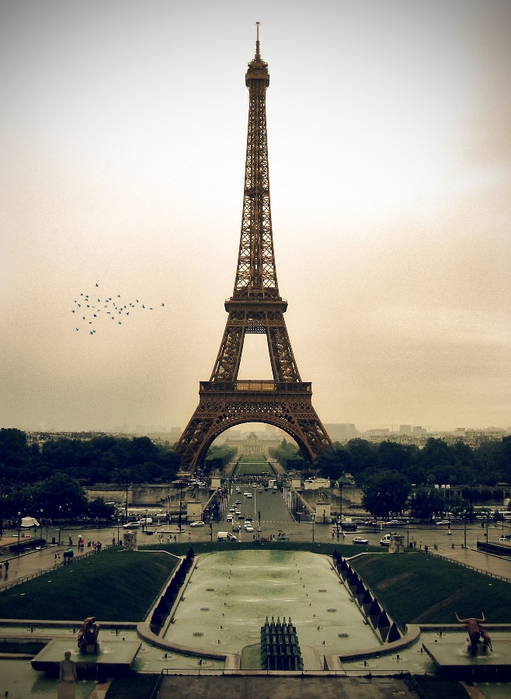 Paris___Eiffel_Tower_by_tariyoko (511x700, 246Kb)