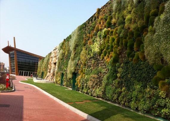 cамый большой вертикальный сад в мире1 (570x405, 185Kb)