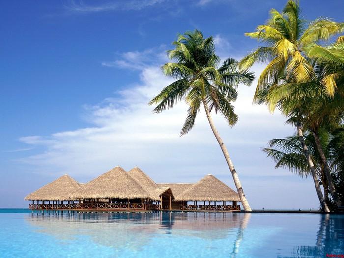 Maldivas-fondos (700x525, 105Kb)