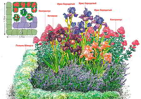cvetnik (450x318, 29Kb)
