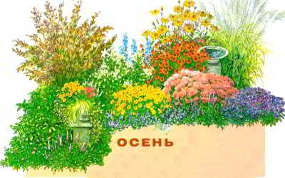 [Изображение: 91871986_large_osen_cvetnik.jpg]