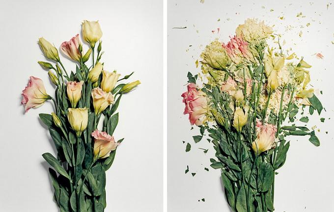 Разбитые цветы2 (680x433, 126Kb)
