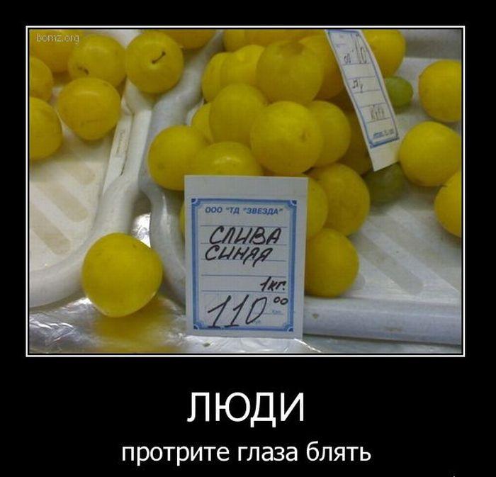 1299347897_demotivatory_45 (700x673, 54Kb)