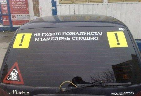 1332481263_podborka_29 (450x309, 27Kb)