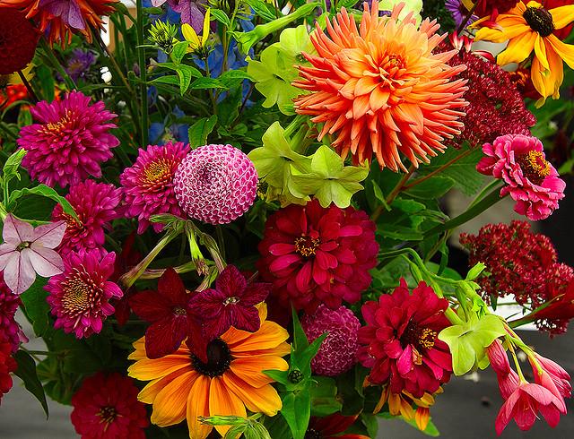 Осенние цветы (640x490, 258Kb)