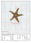 Превью sea life14 (509x700, 367Kb)