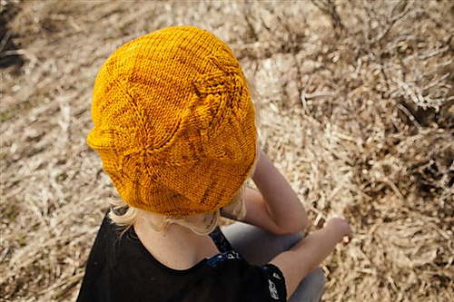 Frankel_20beret_202.jpg-550x0_medium (500x333, 124Kb)