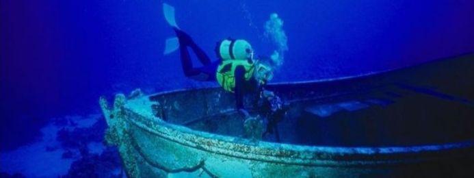 Секреты подводного мира/2741434_2 (693x260, 19Kb)