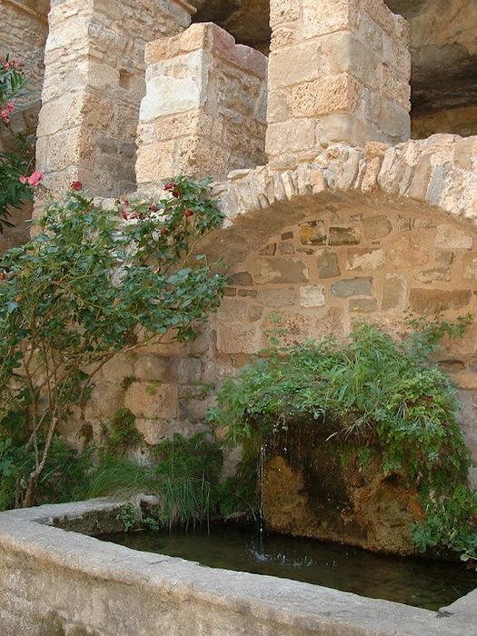 Природный парк Сан Мигель дель Фай. 81274