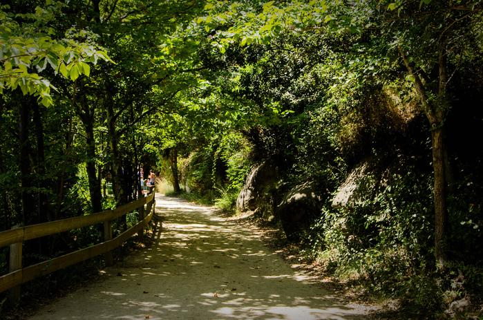 Природный парк Сан Мигель дель Фай. 53842