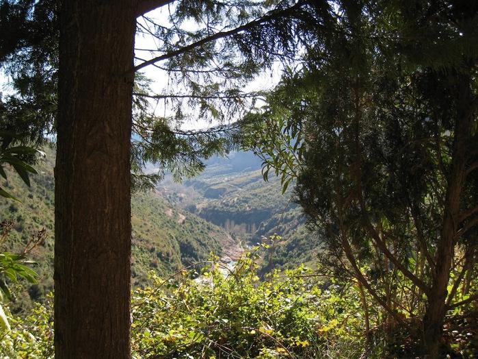Природный парк Сан Мигель дель Фай. 50821